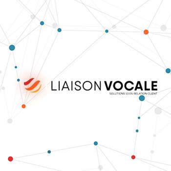 Liaison-Vocale